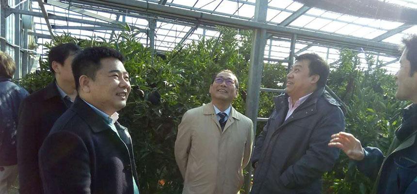 동대 리더자들이 일본에 가서 고찰, 학습